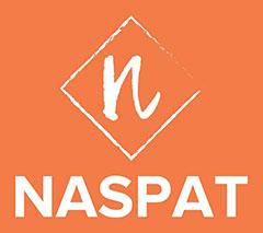 NSAPAT-Logo